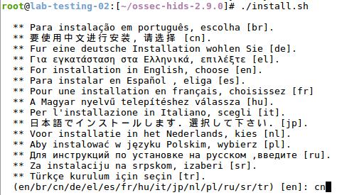 Ossec Server 與 Ossec Agent 設定-03.png